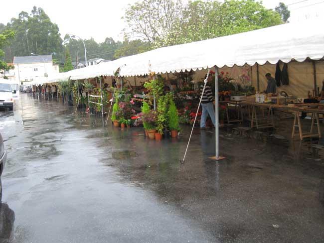 Feria de las Flores O-tres11