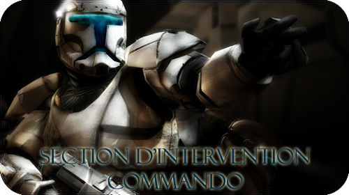 Section d'Intervention Commando de l'E.N.G.I.A. Engia_14