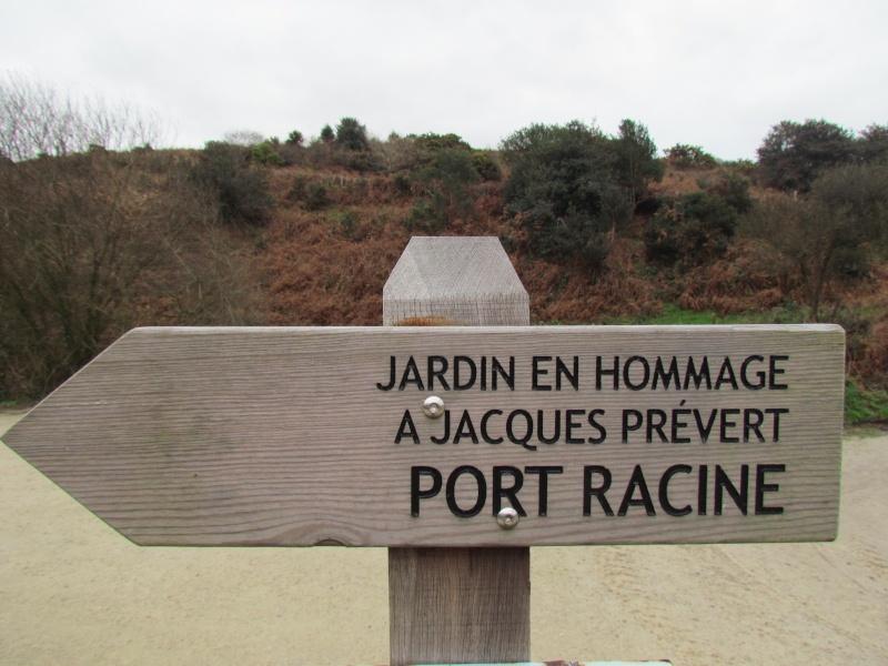 la HAGUE PHARE DE GOURY .AUDERVILLE .LA BAIE D ECALGRAIN .POINTE DE JOBOURG.PORT RACINE 00110