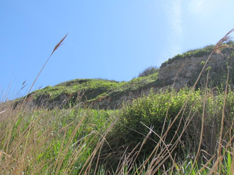 la mer, les dunes le littoral, les falaises, les bateaux 257