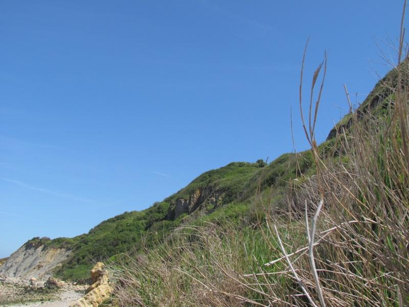 la mer, les dunes le littoral, les falaises, les bateaux 448