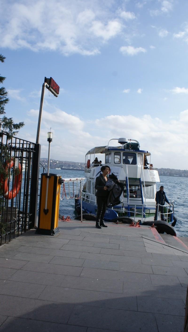 Visite d' Istanbul - Page 2 Dsc05403