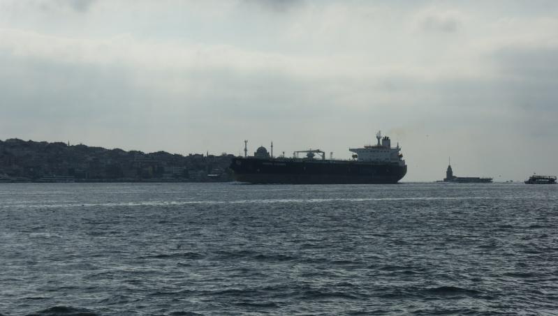Visite d' Istanbul - Page 2 Dsc05425