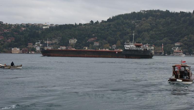 Visite d' Istanbul - Page 2 Dsc05442