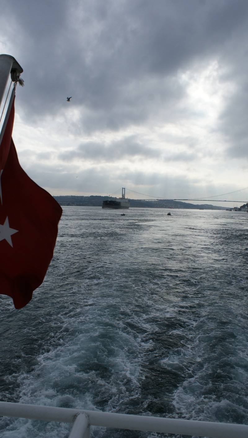 Visite d' Istanbul - Page 2 Dsc05444