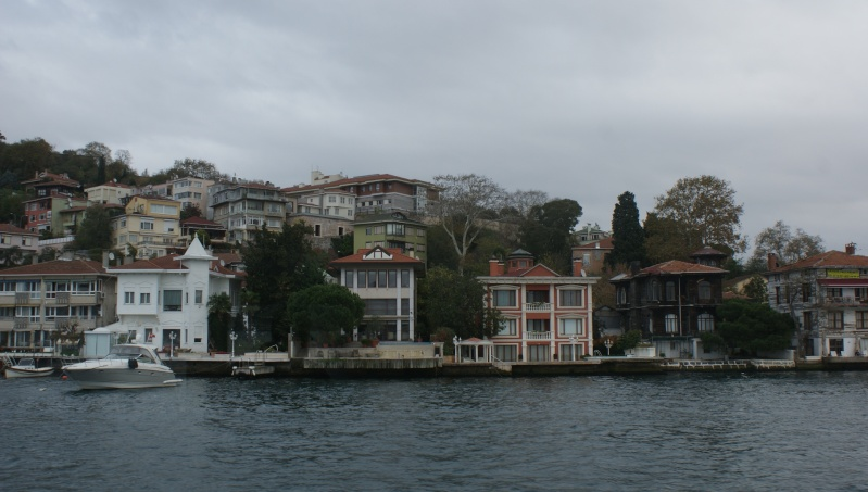 Visite d' Istanbul - Page 2 Dsc05501