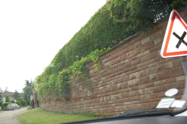 Petite escapade à Wangen en juin 2008 Dsc_1427