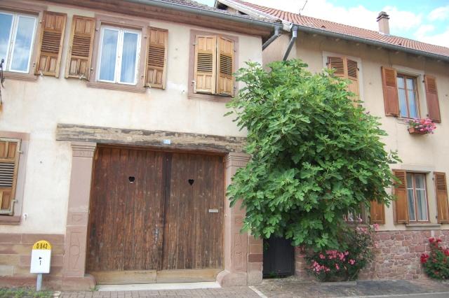 Petite escapade à Wangen en juin 2008 Dsc_1437