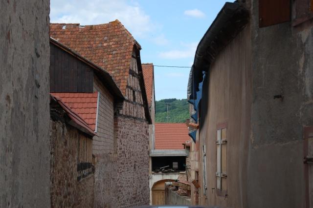 Petite escapade à Wangen en juin 2008 Dsc_1478