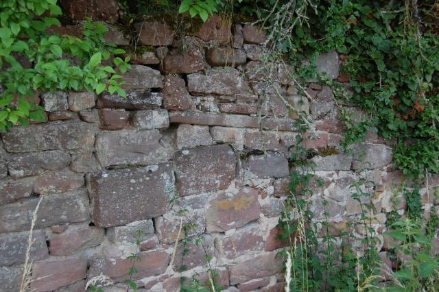 Petite escapade à Wangen en juin 2008 Dsc_1497