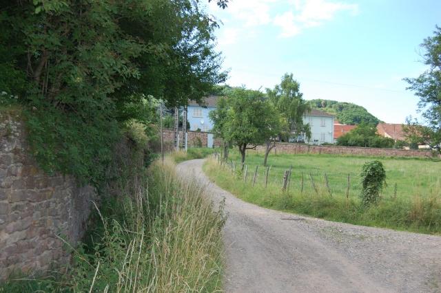 Petite escapade à Wangen en juin 2008 Dsc_1498