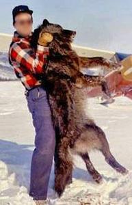 Stop Animals Genocid lance une pétition contre le site Voyage-chasse.com !!! Safari15