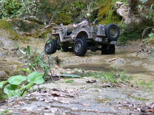 jeep willys en travaux......dans le 31 P1000917