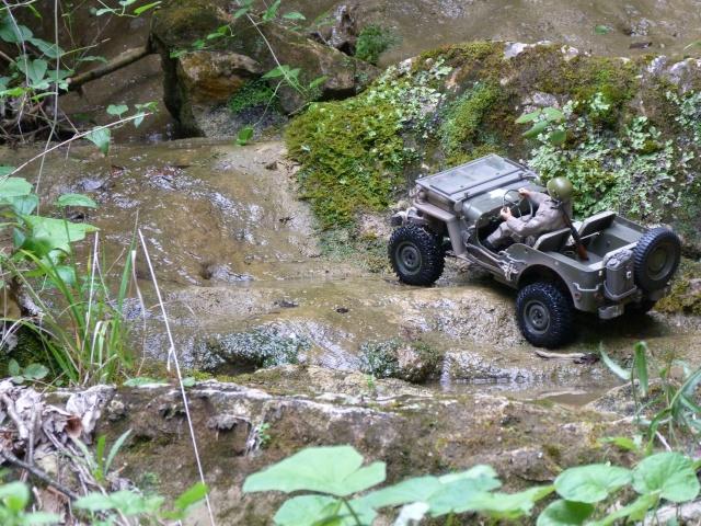jeep willys en travaux......dans le 31 P1000918