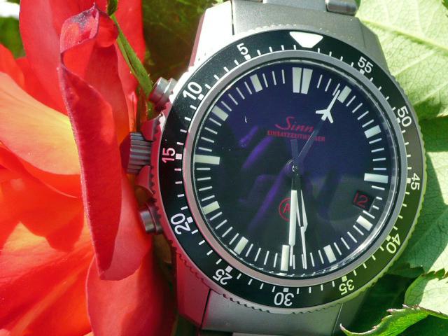 Quelles sont pour vous les plus belles montres de plongée ? - Page 5 P1020212