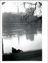Willy Ronis [Photographe] 97828410
