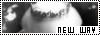 Lier New Way Nwlier11