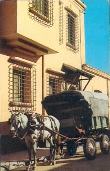 "Emission ""Gares d'Algérie"" du 09 Juillet - Page 2 Clip_i33"