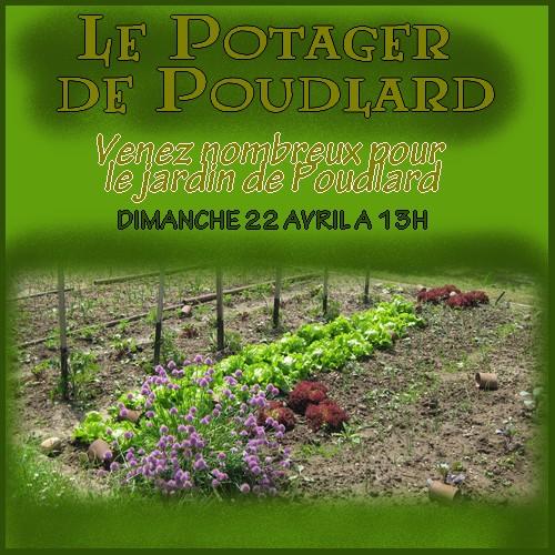 Jardin de Poudlard Potage10