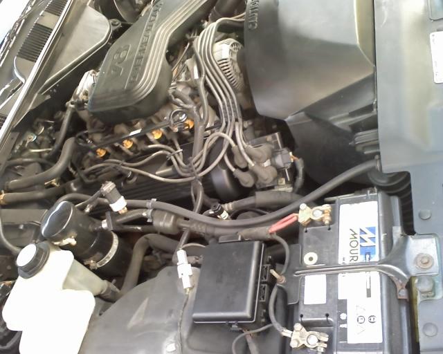 europamotors 19/07 19-07-10
