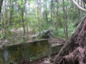 Jungle CTF in Vega Baja Hpim2117