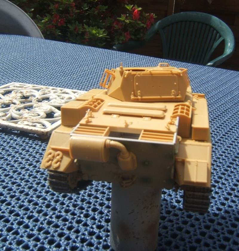 "Panzer II ""Lusch""  Tasca 1/35 Peinture terminée Dscf6527"