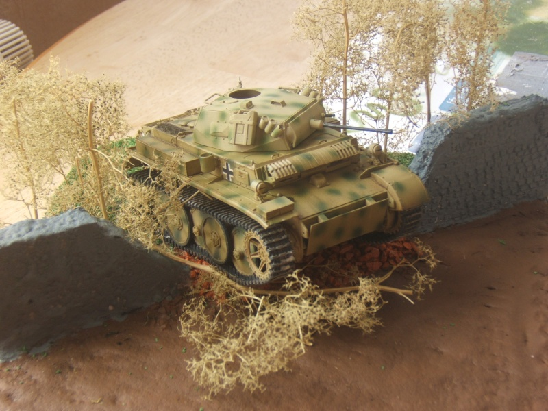 "Panzer II ""Lusch""  Tasca 1/35 Peinture terminée - Page 3 Dscf6710"