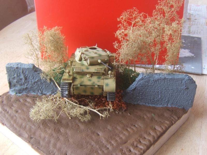 "Panzer II ""Lusch""  Tasca 1/35 Peinture terminée - Page 3 Dscf6711"