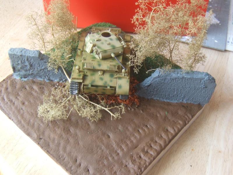 "Panzer II ""Lusch""  Tasca 1/35 Peinture terminée - Page 3 Dscf6713"