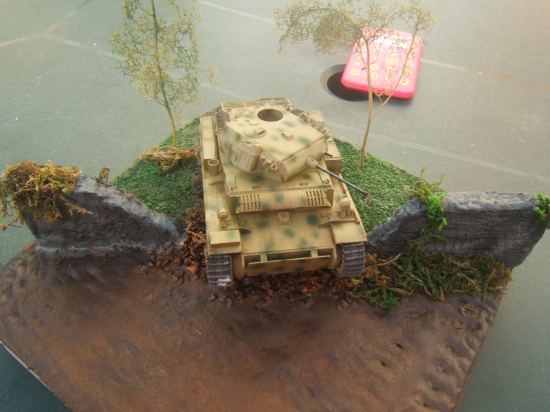 "Panzer II ""Lusch""  Tasca 1/35 Peinture terminée - Page 3 Dscf6717"