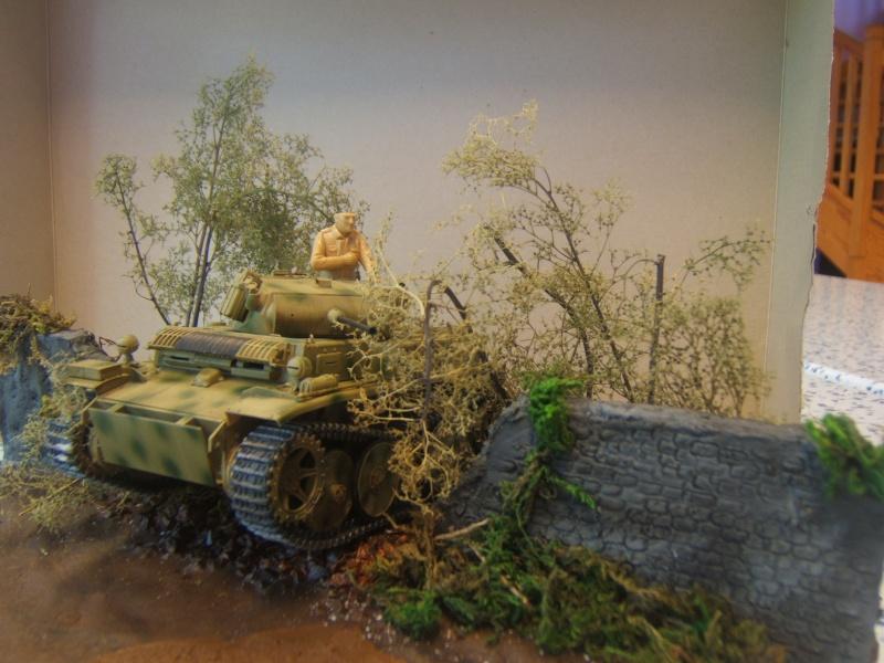 "Panzer II ""Lusch""  Tasca 1/35 Peinture terminée - Page 3 Dscf6718"