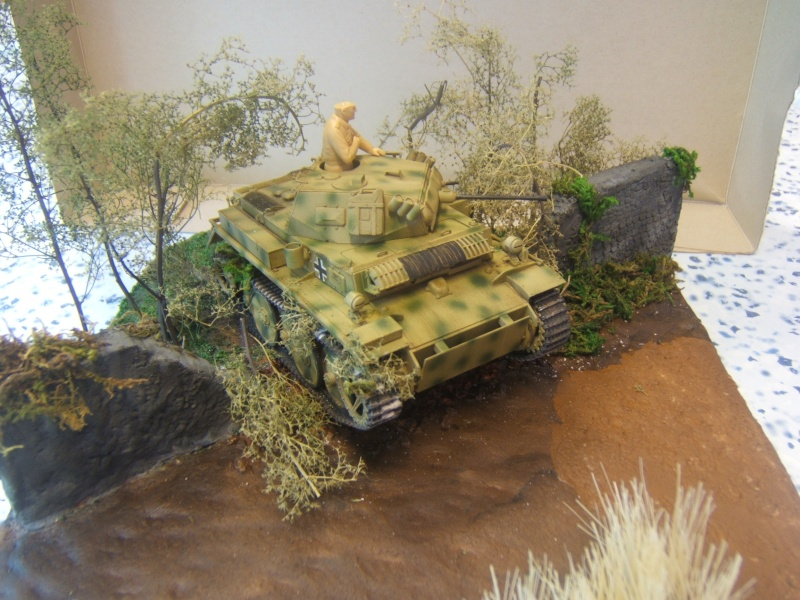 "Panzer II ""Lusch""  Tasca 1/35 Peinture terminée - Page 3 Dscf6719"