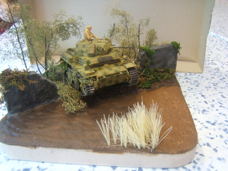 "Panzer II ""Lusch""  Tasca 1/35 Peinture terminée - Page 3 Dscf6720"