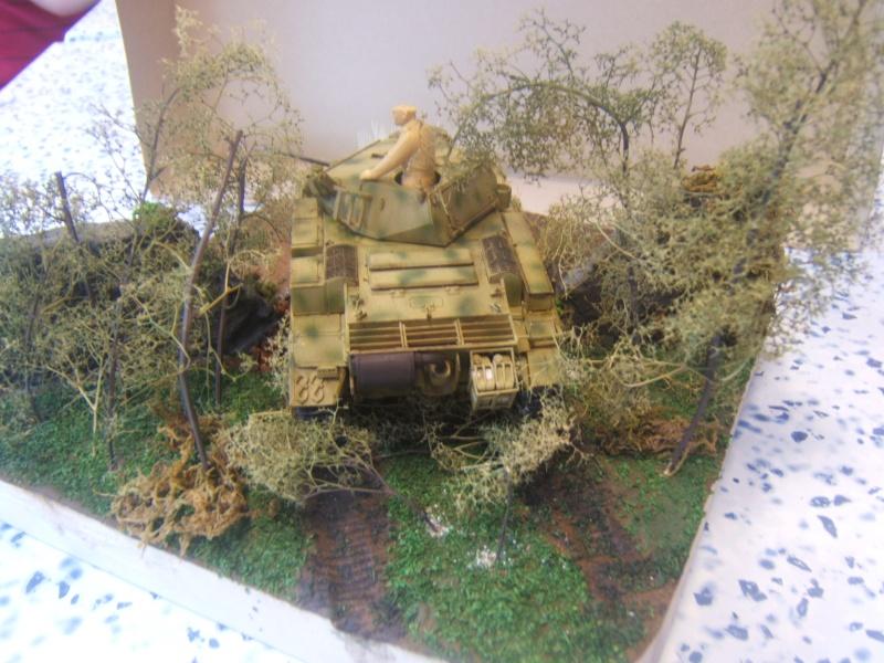 "Panzer II ""Lusch""  Tasca 1/35 Peinture terminée - Page 3 Dscf6721"
