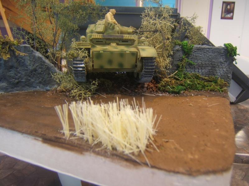 "Panzer II ""Lusch""  Tasca 1/35 Peinture terminée - Page 3 Dscf6723"