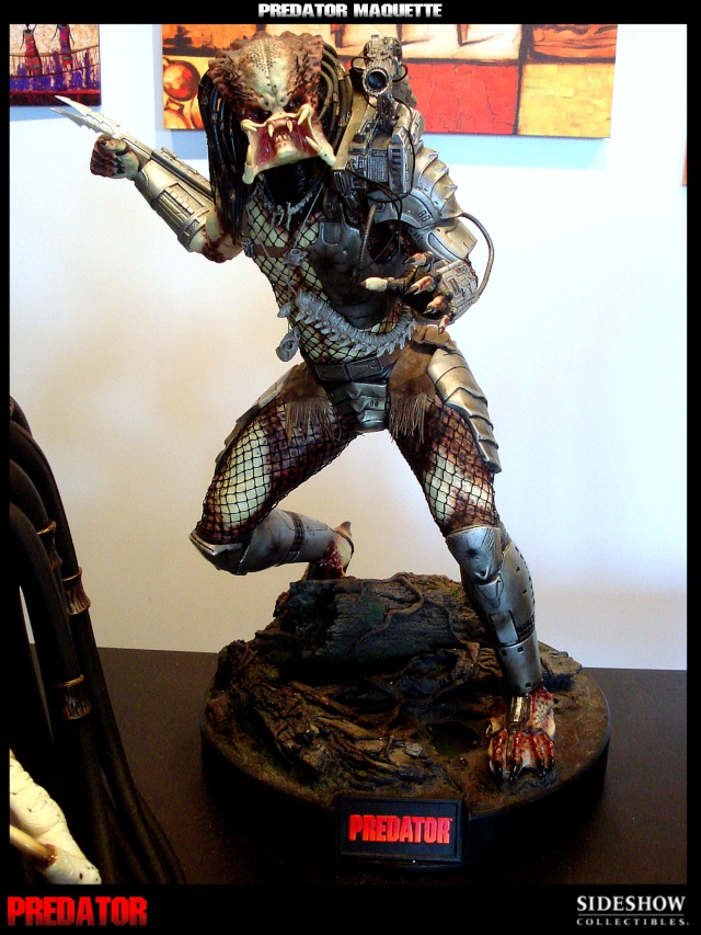 Collection n°329 : Redfield  MAJ du 15/08/11--> MAJ Predator Jungle Dsc09910