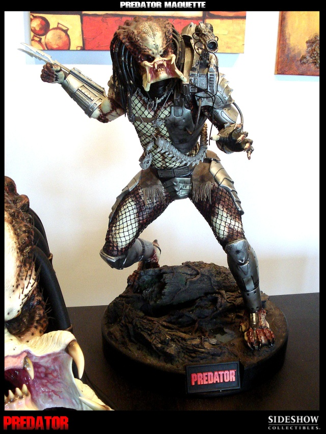 Collection n°329 : Redfield  MAJ du 15/08/11--> MAJ Predator Jungle Dsc09911