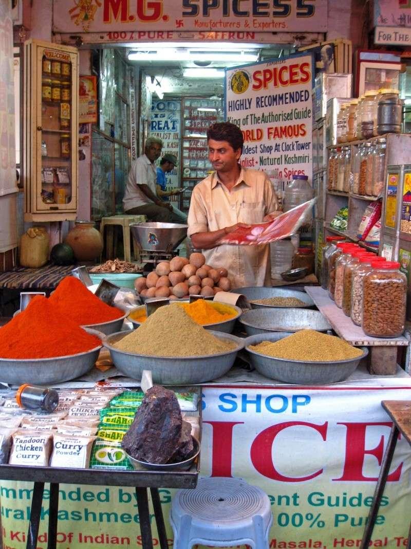 Inde, carnet de route 2011 - Page 2 Img_3943