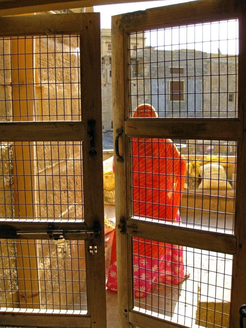 Inde, carnet de route 2011 - Page 2 Img_4027