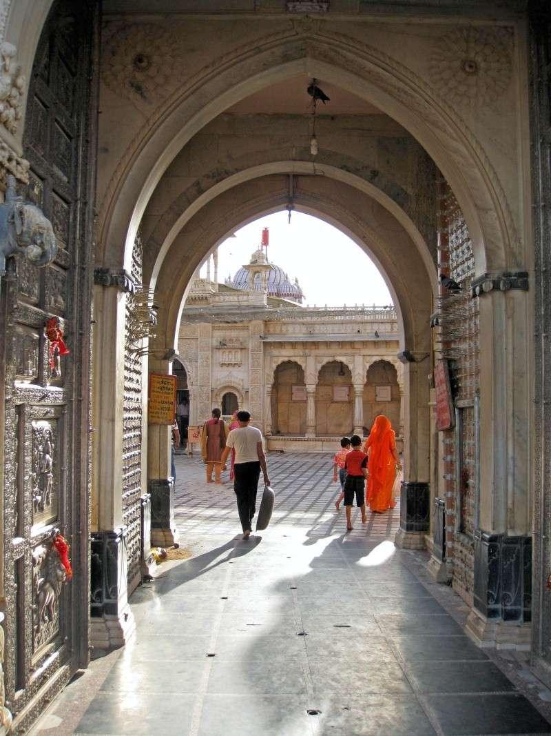 Inde, carnet de route 2011 - Page 2 Img_4132