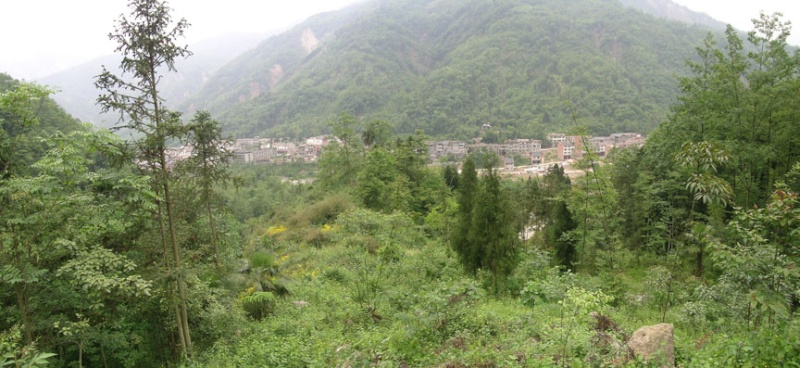Tremblement de terre en Chine Dscn2595