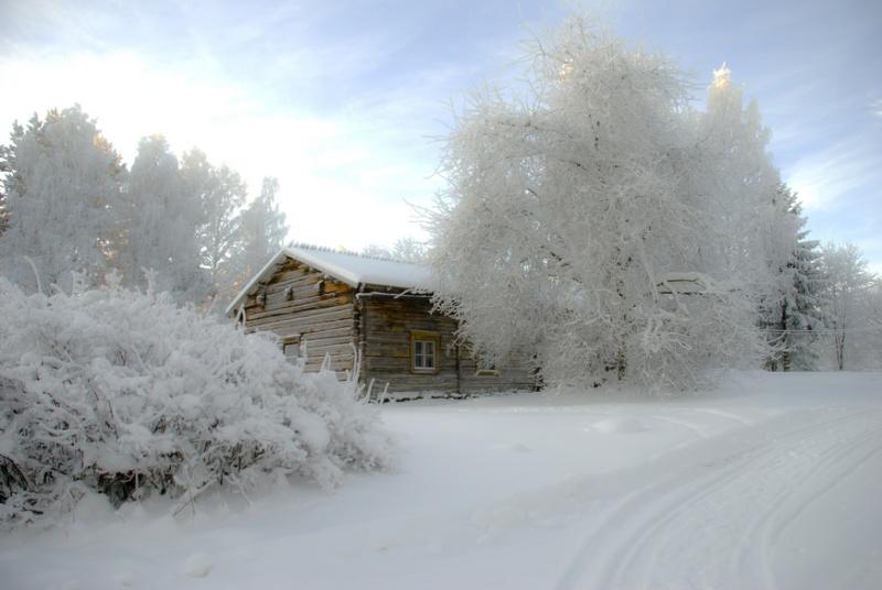 [Finlande] - Les routes glacées, ou le chemin le plus court 47651110
