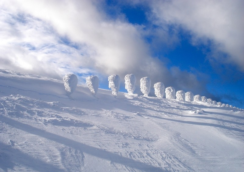 [Finlande] - Les tunturi, montagnes arctiques de Laponie 49163010