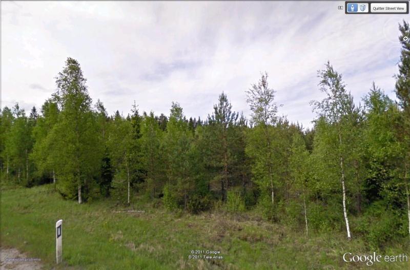 [Finlande] - Gestion de la forêt Forats10