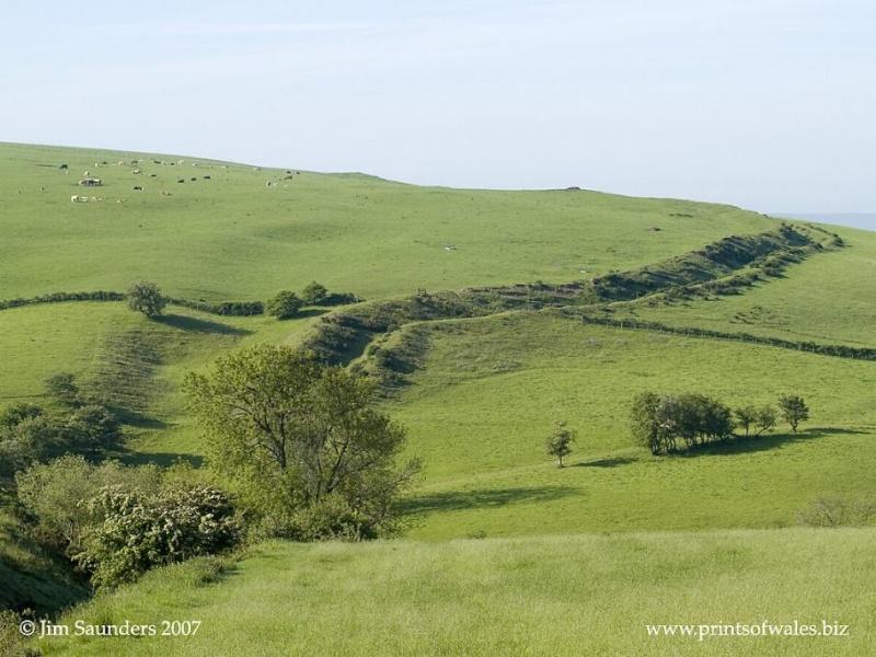 La Digue d'Offa (Offa's Dyke), frontière entre l'Angleterre et le Pays de Galles J6014110