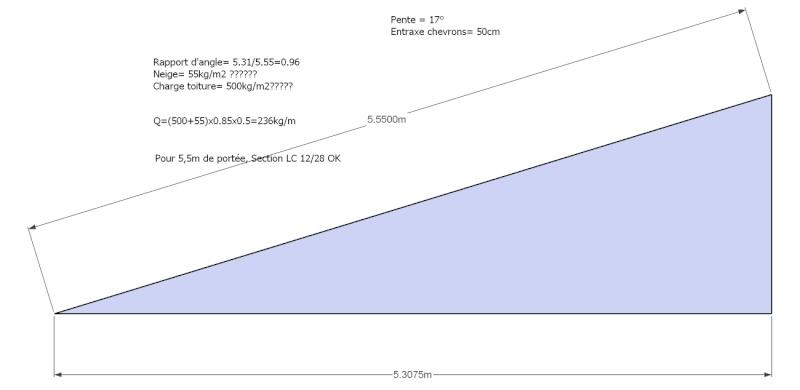 longueur maxi poutres en I - Page 3 Sans_t10