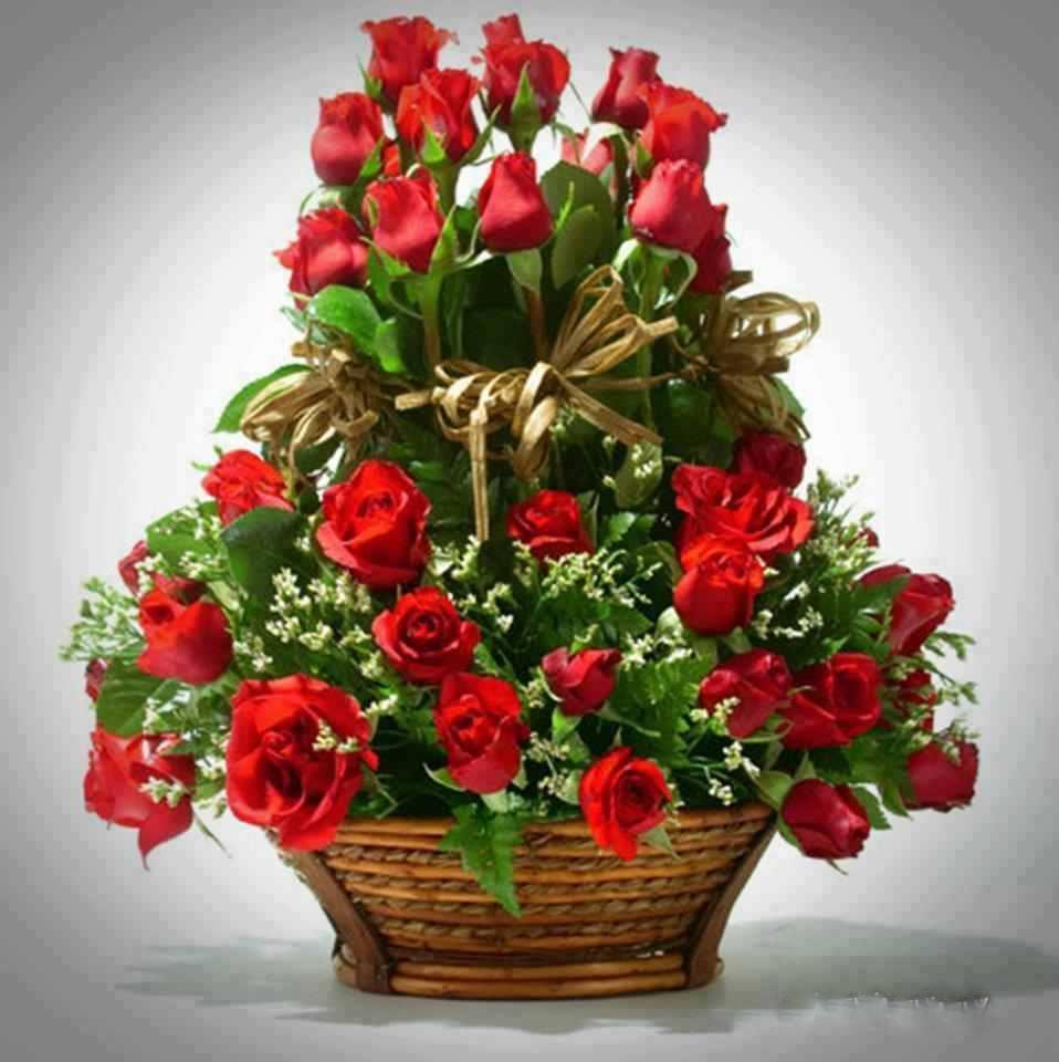 Bon anniversaire Linda  39c97410