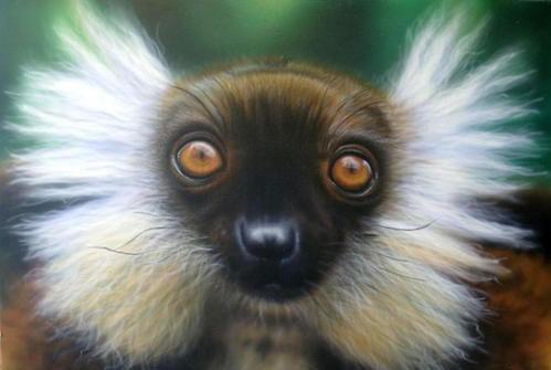 Primates en péril !!! Un_lem10