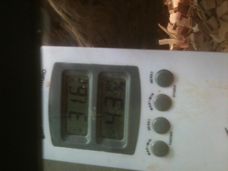 probleme de temperature ( assez urgent ) Img_0513