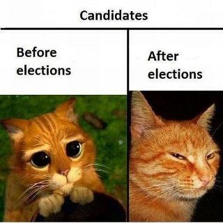 que disez-vous:les elections législatives une réalité comme decrit la photo? 40709510